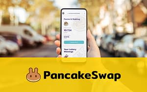Setting Up Pancake Swap Online Course